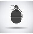 Attack grenade icon vector image