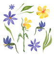 blue and yellow flowers vector image