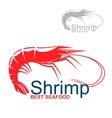 Marine red shrimp badge for fish market design vector image vector image