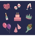 Birthday party icons set and celebration icon vector image