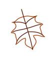 autumn leaf season natural foliage flora vector image