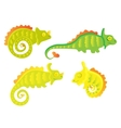 Cartoon Chameleon set vector image