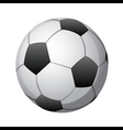 soccer ball on white vector image