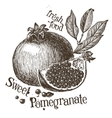 pomegranate logo design template fruit or vector image