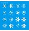 set with snowflakes vector image