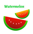 watermelon icon cute red watermelon slide vector image