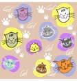 Seamless set different colors cats with vector image