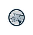 Mastiff Dog Mongrel Head Side Circle vector image
