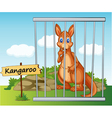 Cartoon Zoo Kangaroo vector image vector image