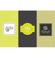 Olive oil packaging vector image