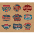Vintage retro label badges - design element vector