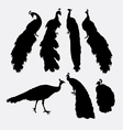 Peacock bird animal silhouette vector image