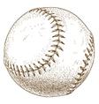 engraving baseball ball vector image vector image