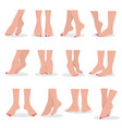 beautiful bare woman feet and legs isolated vector image