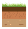 soil layers vector image