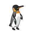 emperor penguin bird nature marine animal vector image