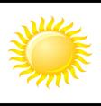 Sun over white vector image