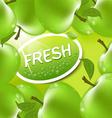 fresh apple background vector image