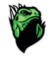 iguana head mascot vector image vector image