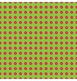 chamomiles or daisy vector image