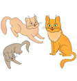 Three funny cartoon cats vector image