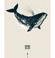 whale space poster vector image vector image