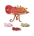 meat products on the table vector image vector image