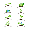 Green Sprout Set vector image vector image