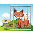 Cartoon Zoo Fox vector image vector image