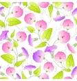 Bindweed flower seamless pattern vector image