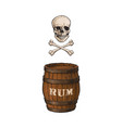 wooden rum barrel skull cross bones set vector image