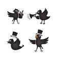 Cartoon birds set vector image