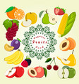 the fruit vector image