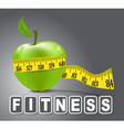 Fitness apple vector image