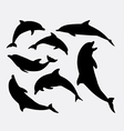 Dolphin animal silhouette vector image