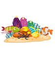 Coral reef fish vector image