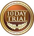 ten day trial gold icon vector image vector image