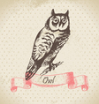 Owl bird hand-drawn vector image vector image