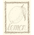 Lemon and Leaves vector image