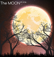 Moon in dark night background vector image