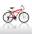 Bycicle vector image vector image