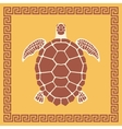 Sea Turtle ornament vector image