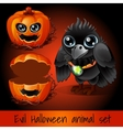 Ppumpkin and crow sullen on a dark red background vector image