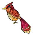 A colorful bird vector image