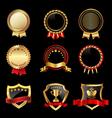 Set of golden badges vector image vector image