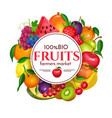 berries and fruits round poster vector image