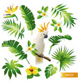 Set with tropical leaves flowers and bird vector image