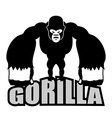 Angry gorilla Aggressive big monkey irritated wild vector image
