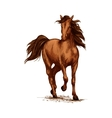Brown horse running gallop on races sketch vector image vector image