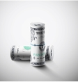 Two rolls of dollars vector image vector image